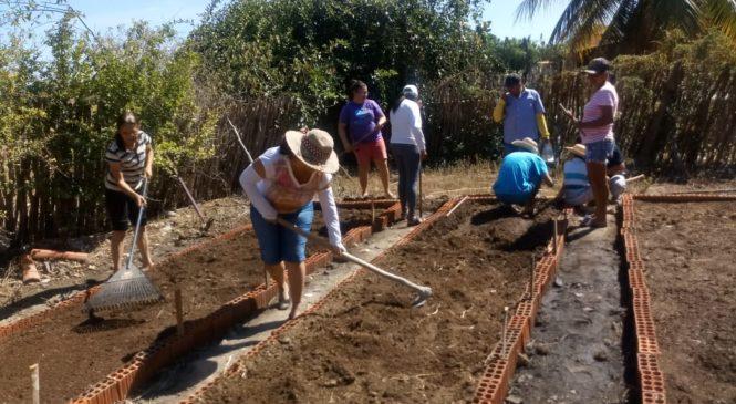CEBs e Cáritas de Iguatu (CE) incentivam instalação de quintais produtivos