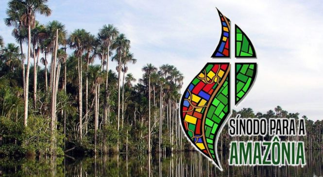 """""""A Amazônia não precisa ser conquistada, nem desbravada, precisa ser respeitada"""". Dom Evaristo Spengler"""