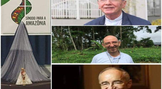 Papa Francisco nomeia relator e secretários especiais do Sínodo para a Amazônia