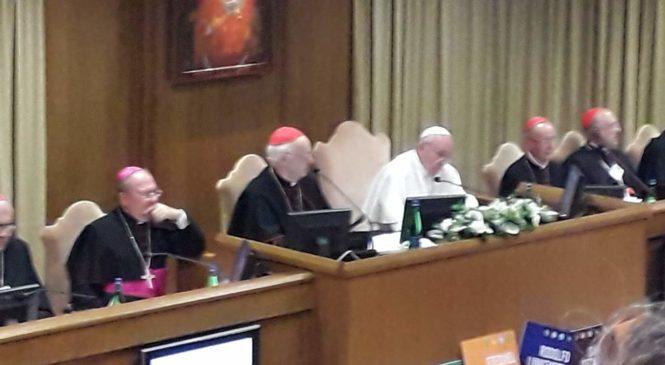 Sobre a fala final do papa Francisco no Sínodo para a Amazônia