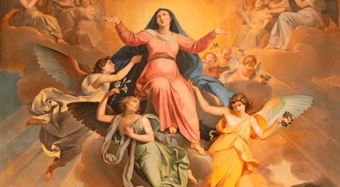Reflexões da Palavra – Festa da Assunção de Nossa Senhora