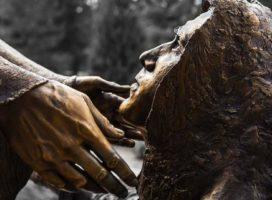 Reflexões da Palavra | 6º Domingo do Tempo Comum – Ano B
