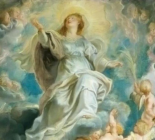 Reflexões da Palavra | Solenidade da Assunção de Nossa Senhora