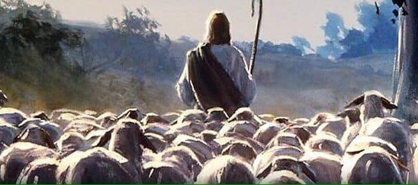 Reflexões da Palavra | 4º Domingo da Páscoa – Ano B