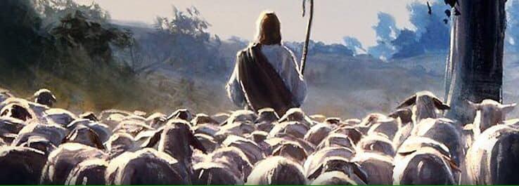 Reflexões da Palavra   4º Domingo da Páscoa – Ano B