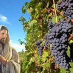 Reflexões da Palavra | 6º Domingo da Páscoa – Ano B
