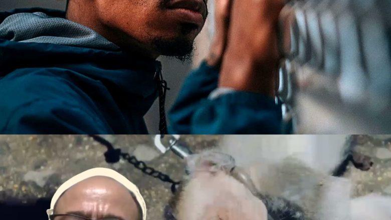 Direitos Humanos dos encarcerados. Contra os sentimentos/pensamentos monstruosos da Xuxa