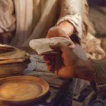 Reflexões da Palavra   17º Domingo do Tempo Comum – Ano B