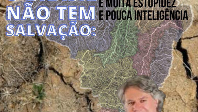 O Brasil não tem salvação: é muita estupidez e pouca inteligência